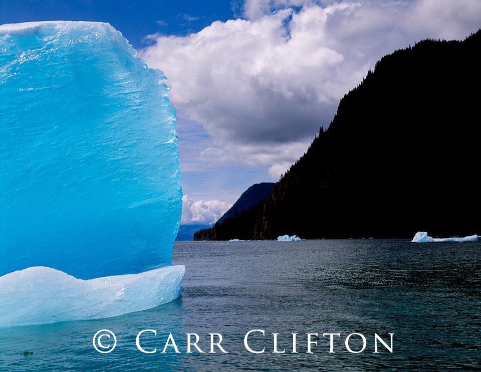 105-116-AK_copyright_carr_clifton