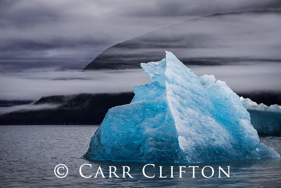 116-1486-AK_carr_clifton