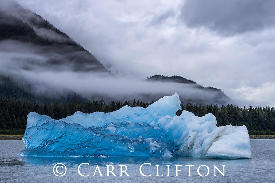 116-1365-AK_carr_clifton
