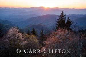 114-1001-NC_carr_clifton