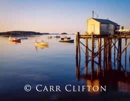 91-1-ME-i_copyright_carr_clifton