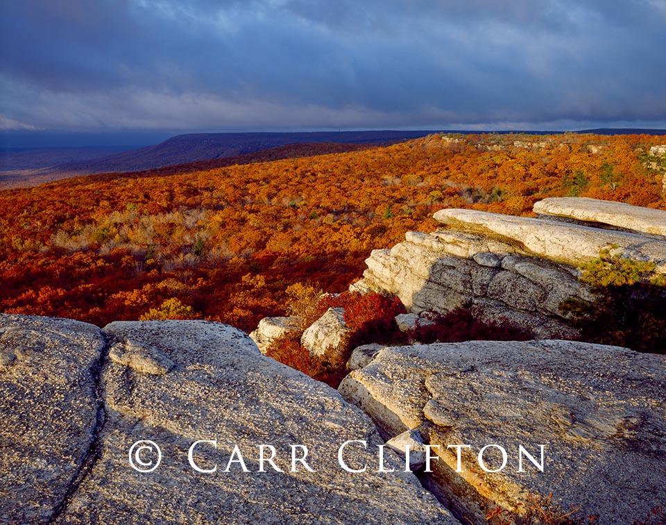 88-199-NY-i_copyright_carr_clifton