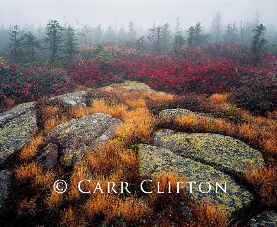 90-21-ME_copyright_carr_clifton